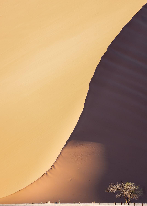 Dune_Duality_3000.jpg