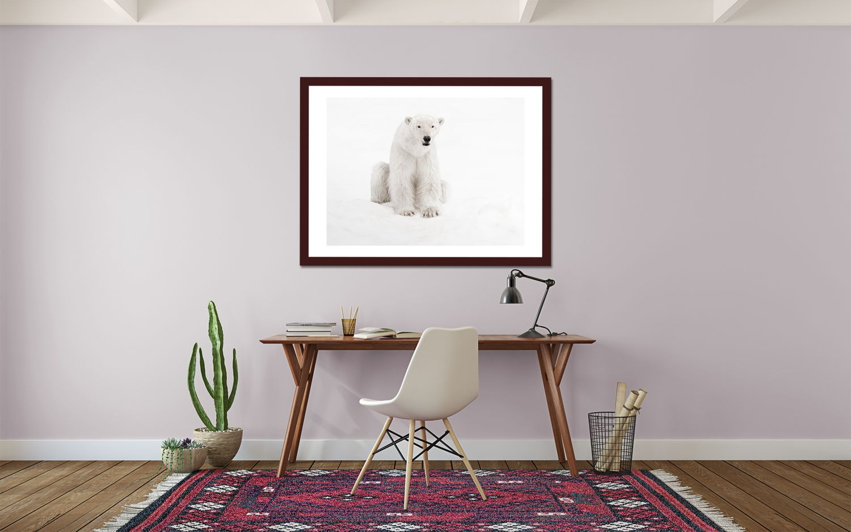 Pink_Office_Bear.jpg