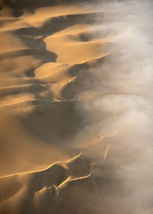 Dune Light - On White