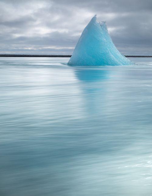 Ice Beach Ice Shark - On White