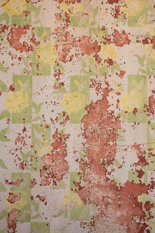Kolmanskop Textures No. 3 - On White