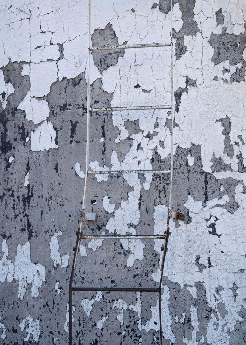 Silo Ladder  - On White